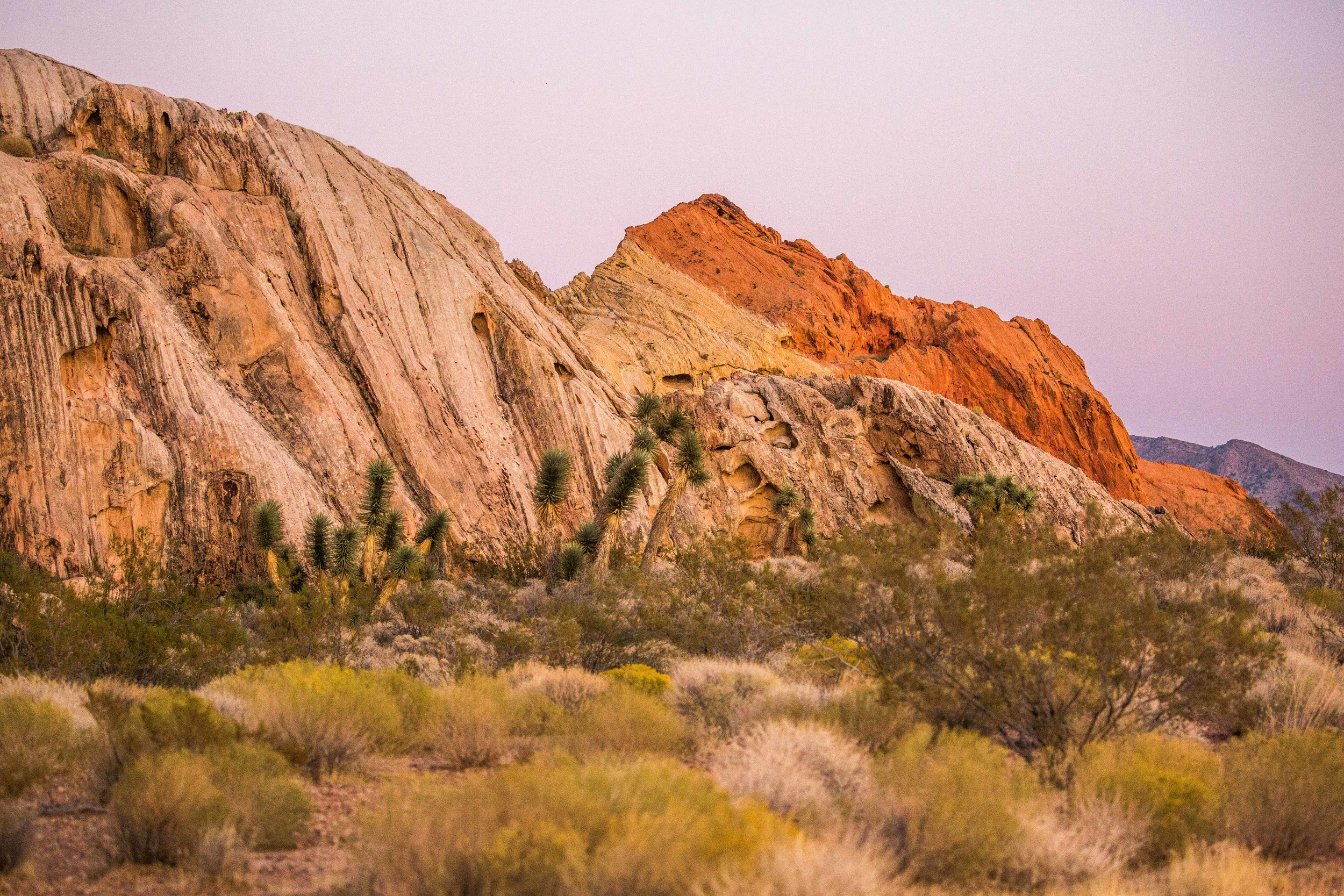 Gold Butte National Monument stands out through its impressive geology and colorful sandstone formations. The whole area looks like a true work of art.