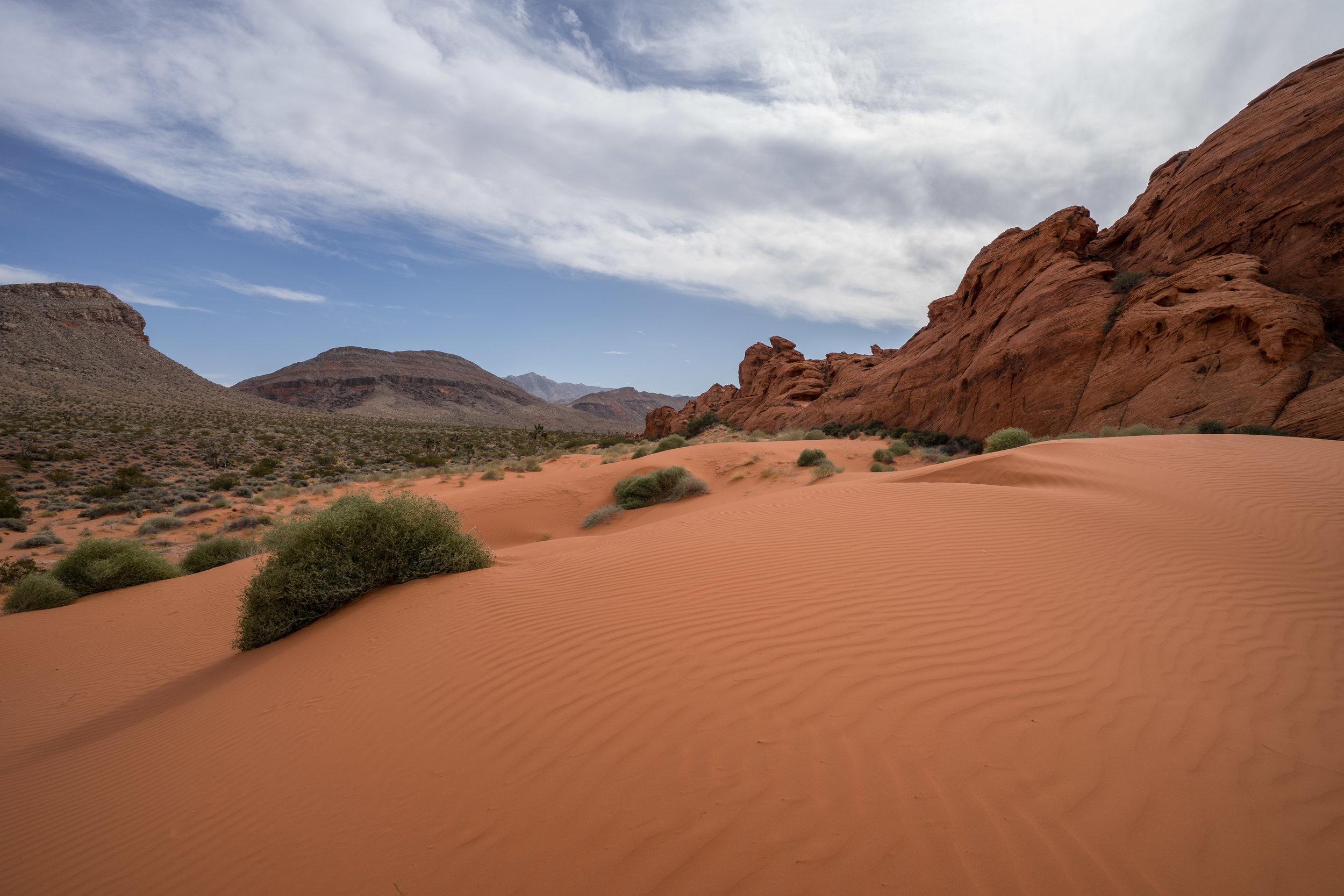 - Walking across the Mud Wash dunes was yet another wonderful experience in Gold Butte. This place truly has something for everyone. In the distance, the north slopes of the Virgin mountains host relict forests from the last Ice Age.