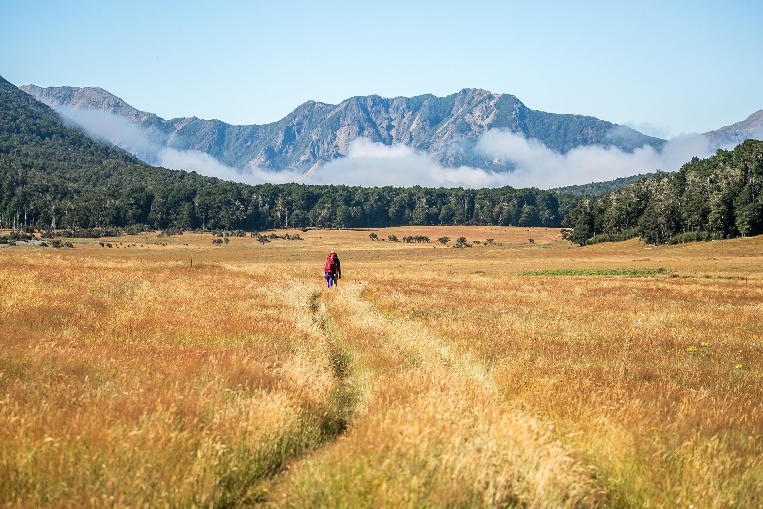 LAKE SUMNER FOREST PARK - Hiking through grassland valleys on New Zealand's Te Araroa