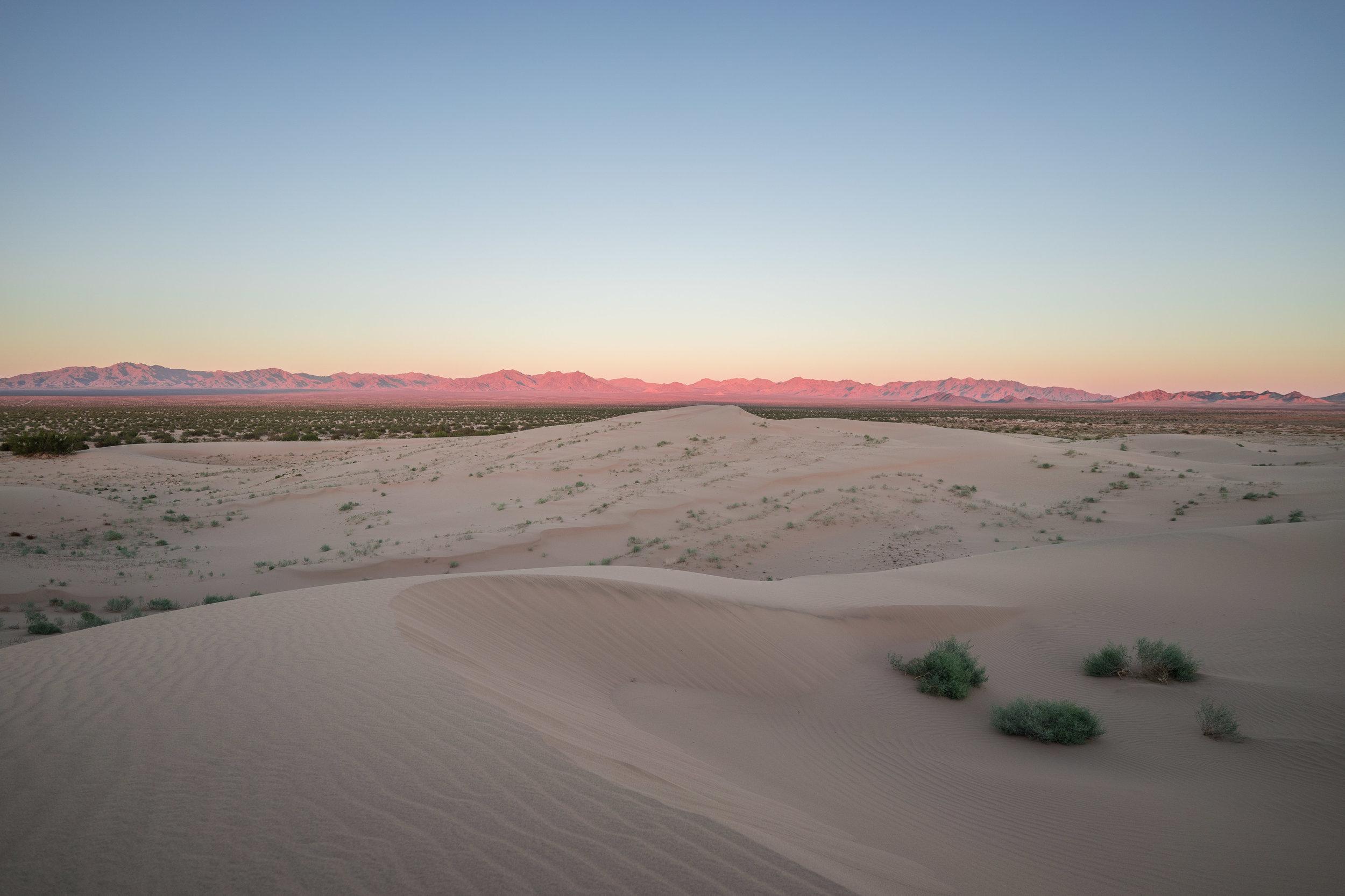 Cadiz Dunes Wilderness, Mojave Trails National Monument, California