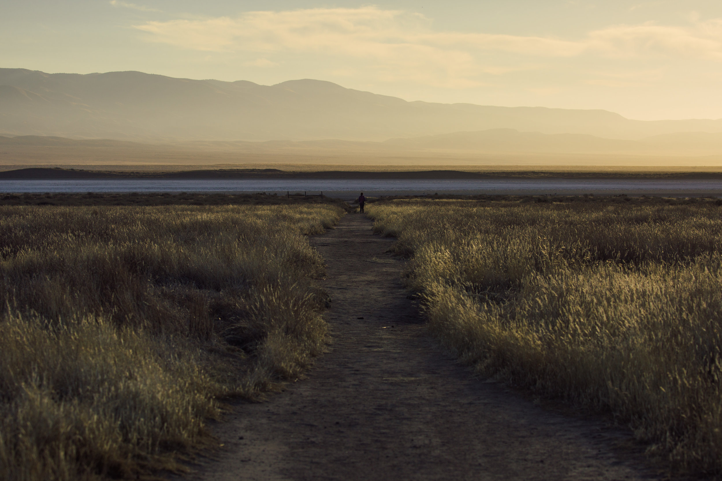 Soda Lake inside Carrizo Plain National Monument, California
