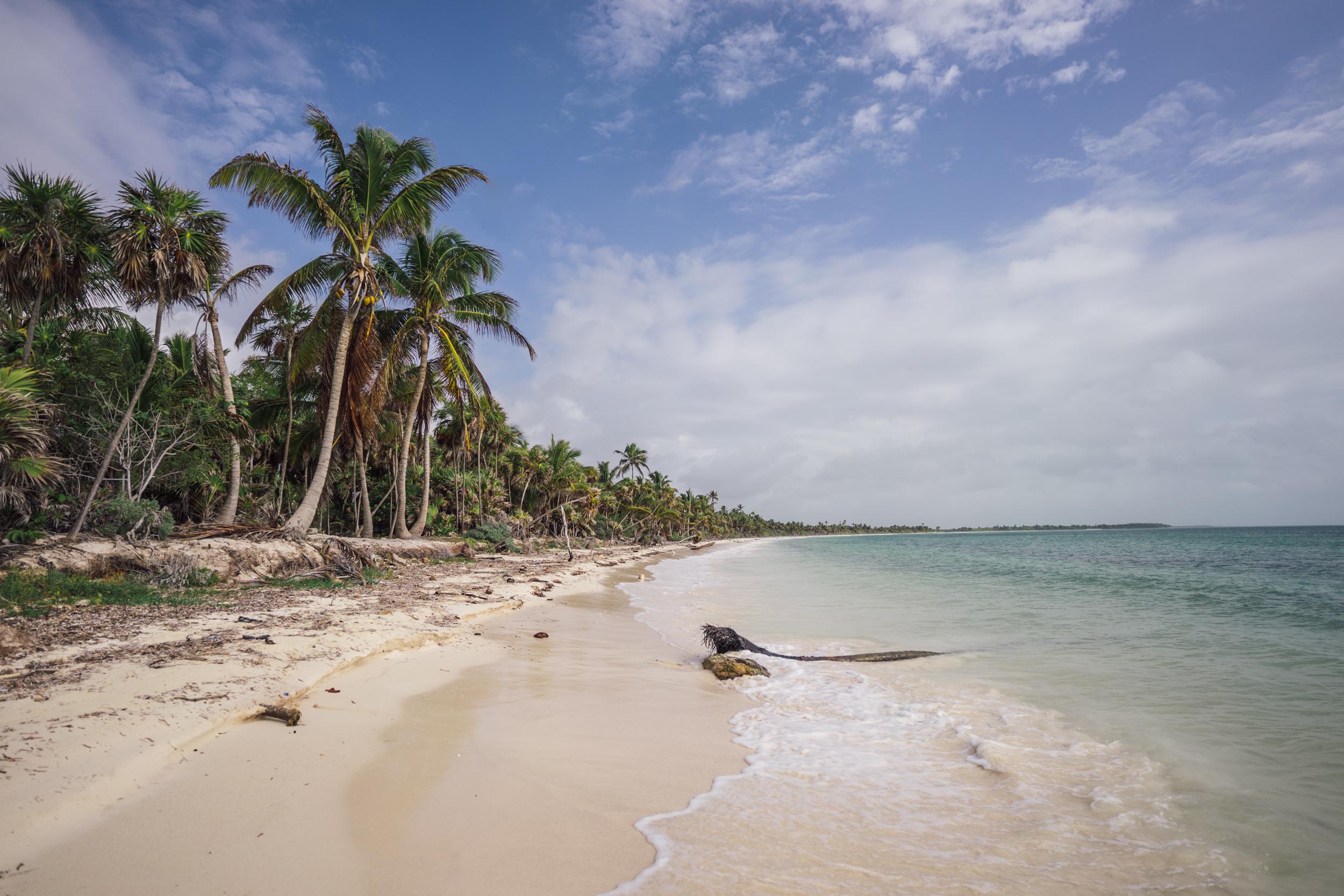 The coast of the Sian Ka'an Biosphere Reserve, Quintana Roo, Mexico