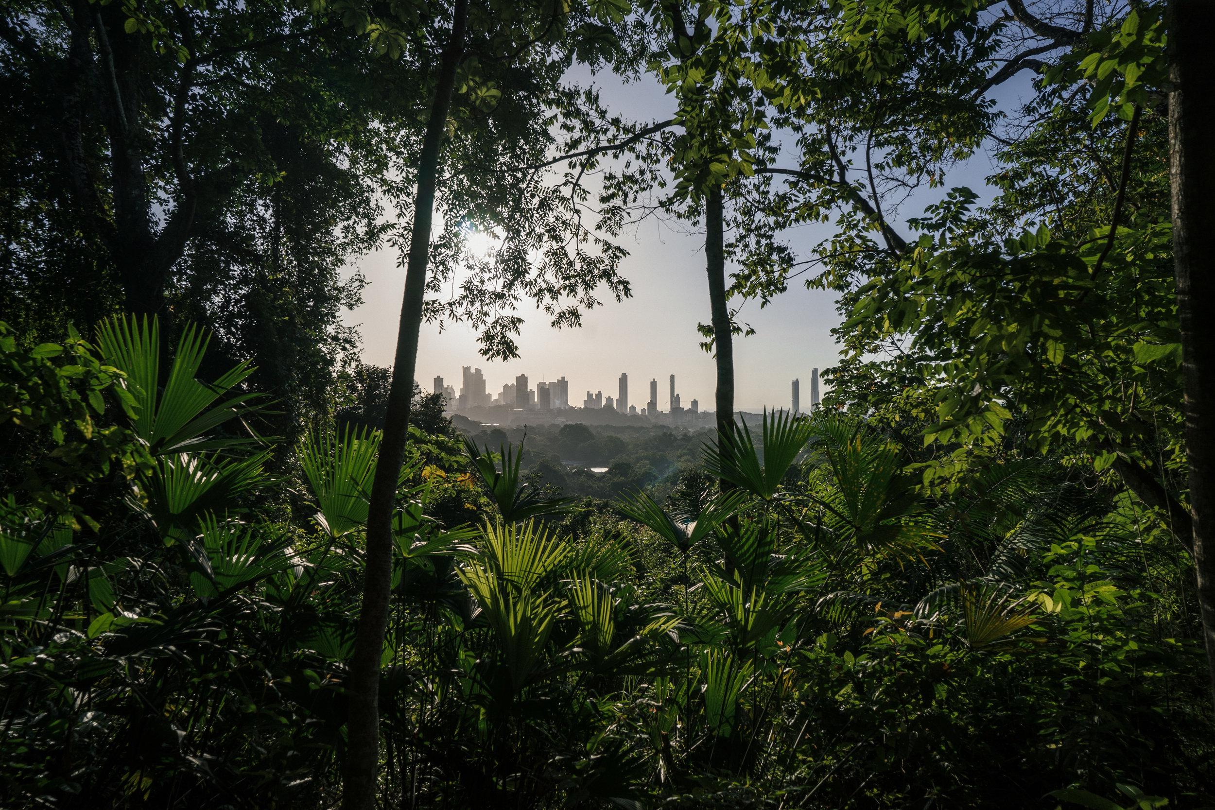 view from the caobos mirador/outlook -