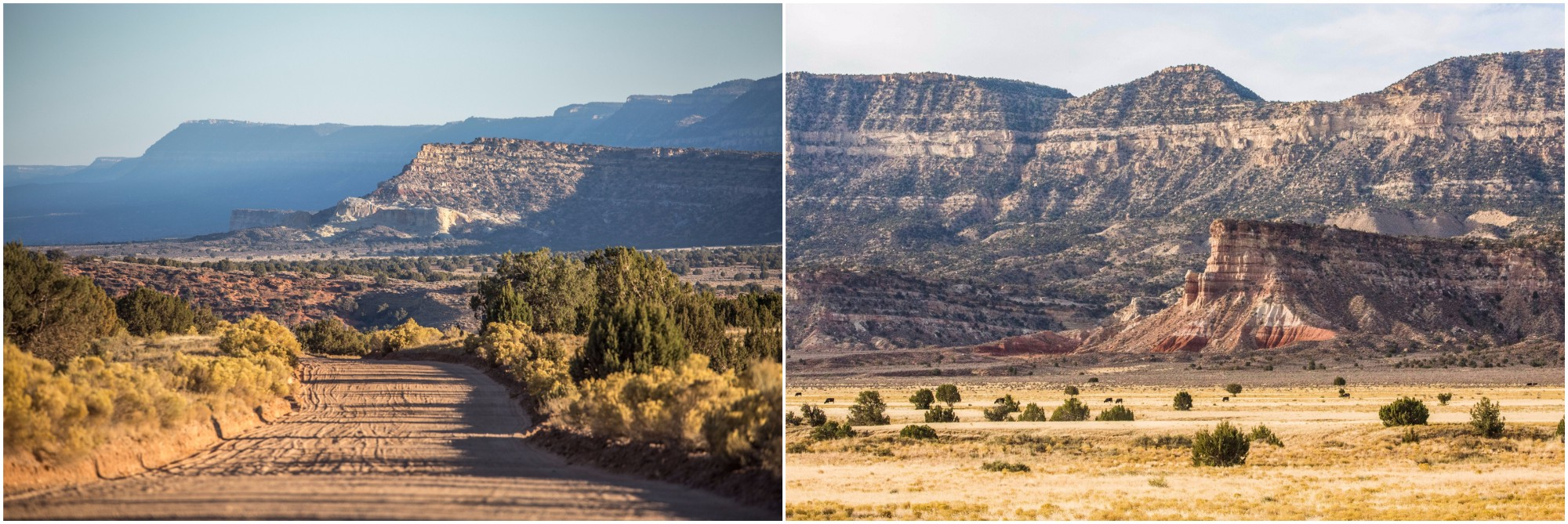 - Left: The 57 miles Hole-in-the-Rock Scenic Backway, which was excluded from the national monument in the current presidential plans. Garfield county is working now with the BLM to improve the state of the road and make it more drivable, as it is constantly damaged by rains and heavy use. Right: The Straight Cliffs, at the edge of the Kaiparowits Plateau. Cows can be seen dotting the landscape, as grazing is allowed in the national monument. The region of the Kaiparowits formation has become in the past two decades one of the best places on the planet for finding dinosaur fossils from the late Cretaceous Era when an asteroid hit the Earth. At least 12 new dinosaur species were discovered in the monument in the last decade and a half. Parts of the Kaiparowits Plateau also contain important coal resources and were carved out of the monument in the president's proposal.