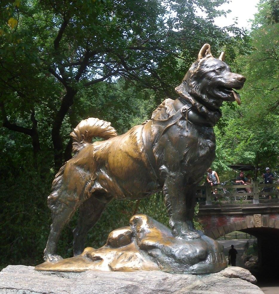 Balto in Central Park, New York City. Helen Hegener