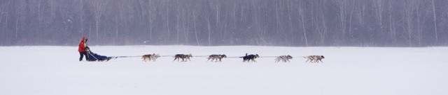 Moe mushing along Devil Track Lake, an area of the Beargrease Marathon in Cook County, Minnesota