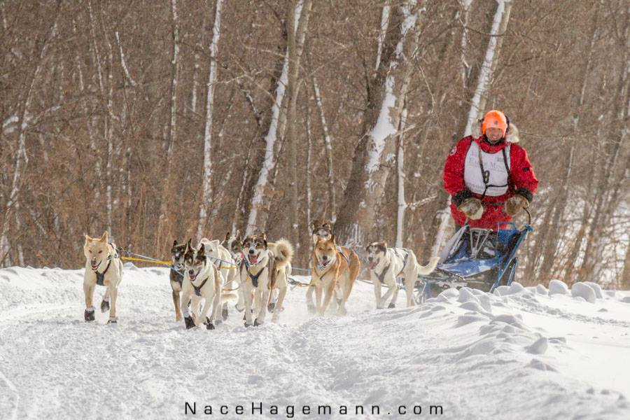 Moe with his team in the 240 mile U.P. 200 in Michigan's Upper Peninsula, in 2015. Photo by Nace Hagemann.