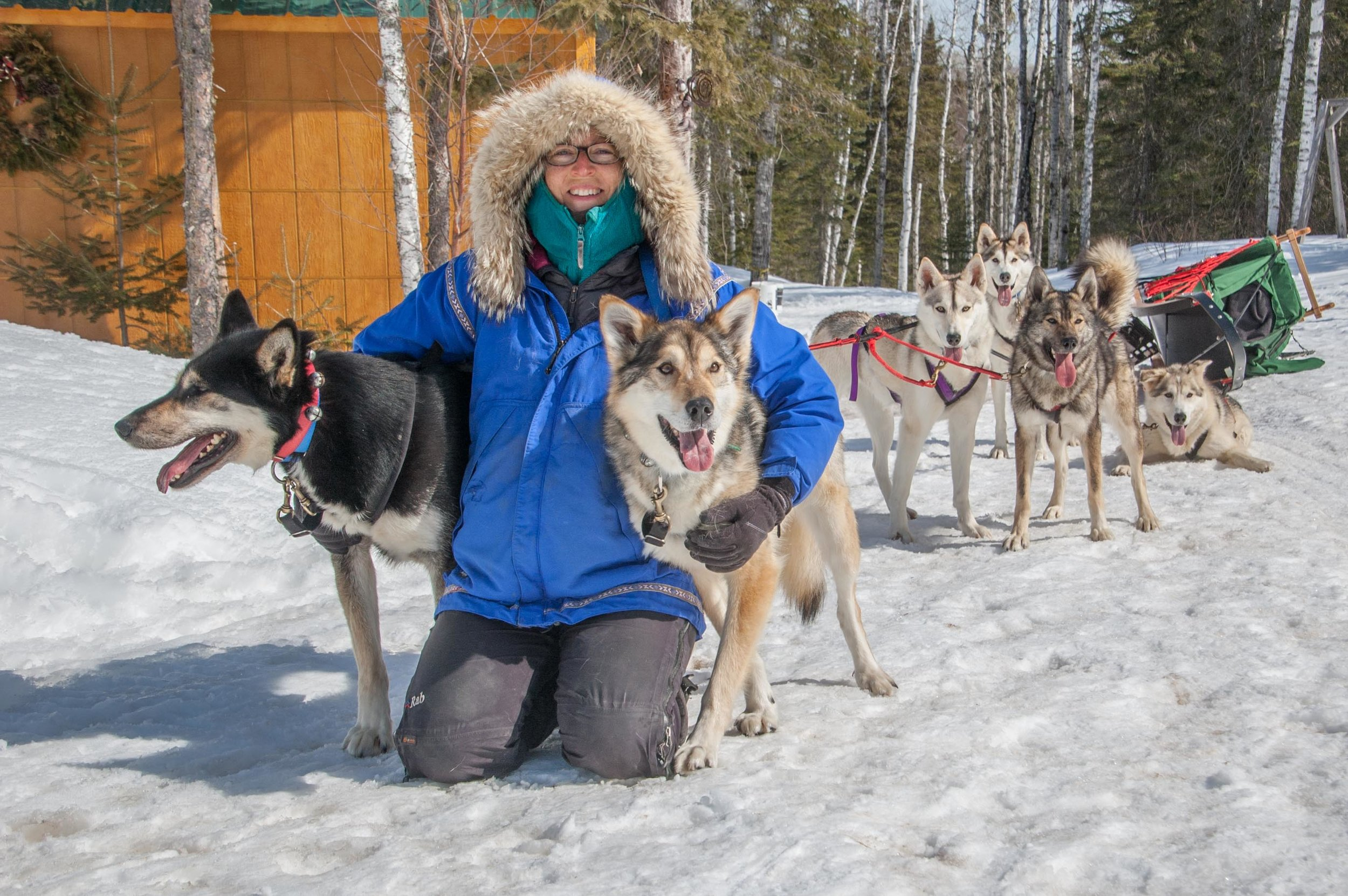 Newman and her smiling huskies