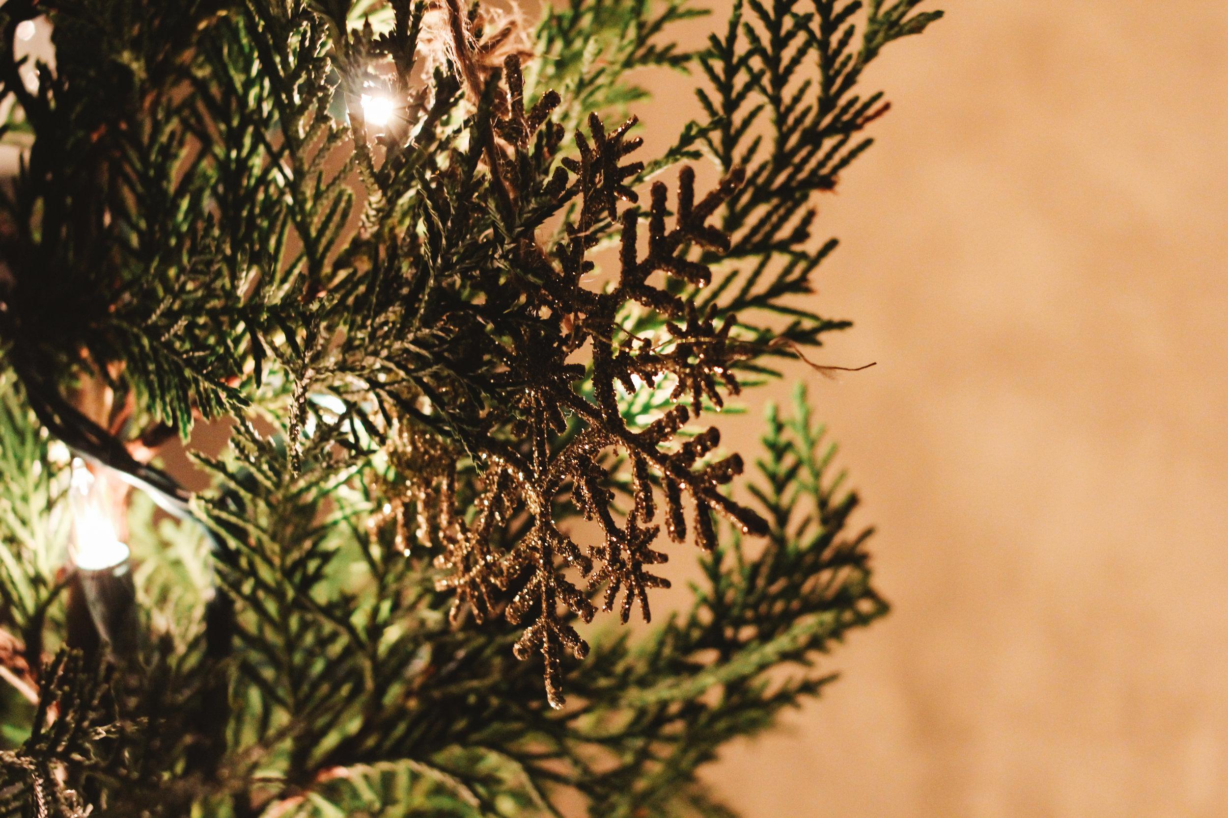 wreath workshop edited-2.jpg