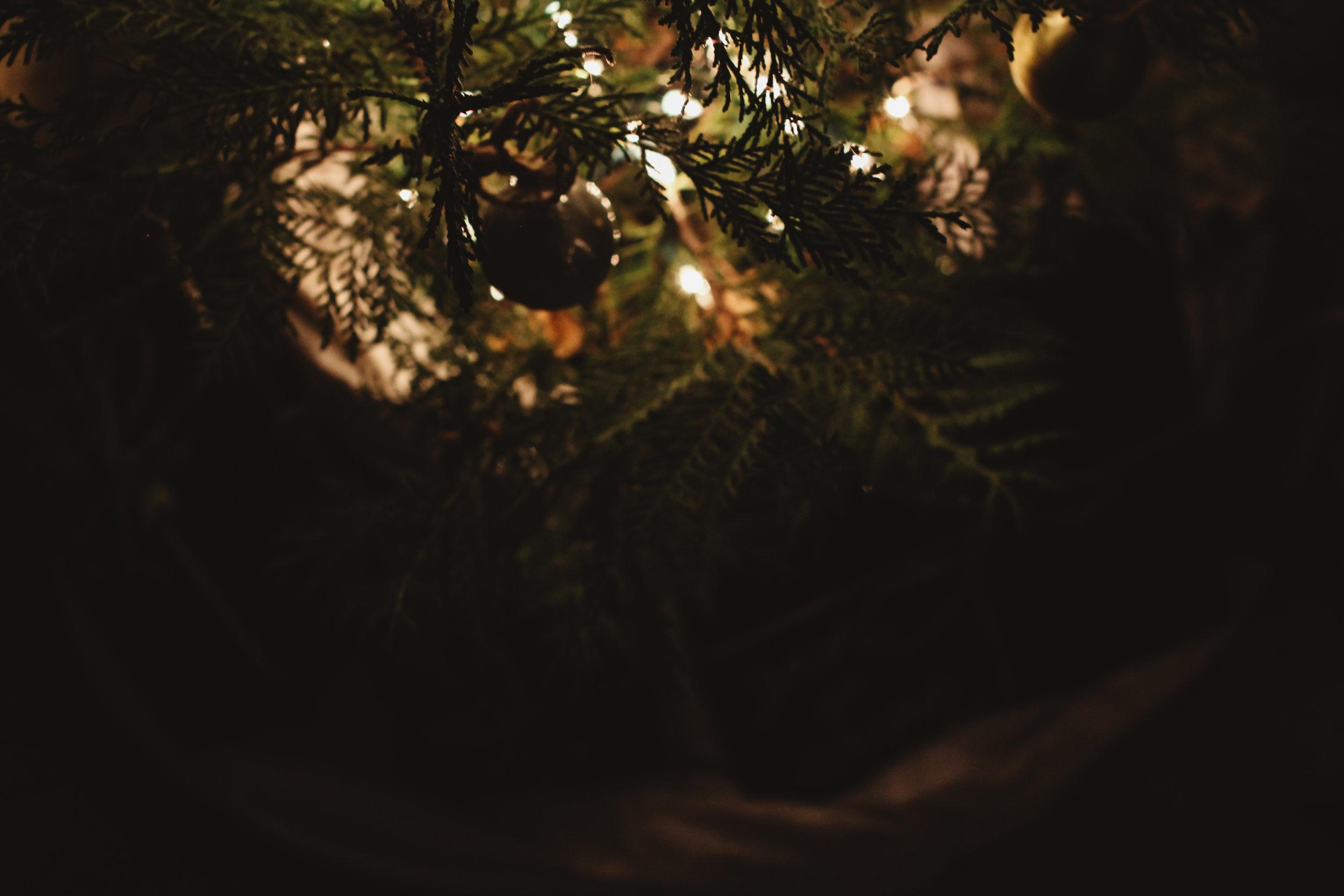 wreath workshop edited-4.jpg