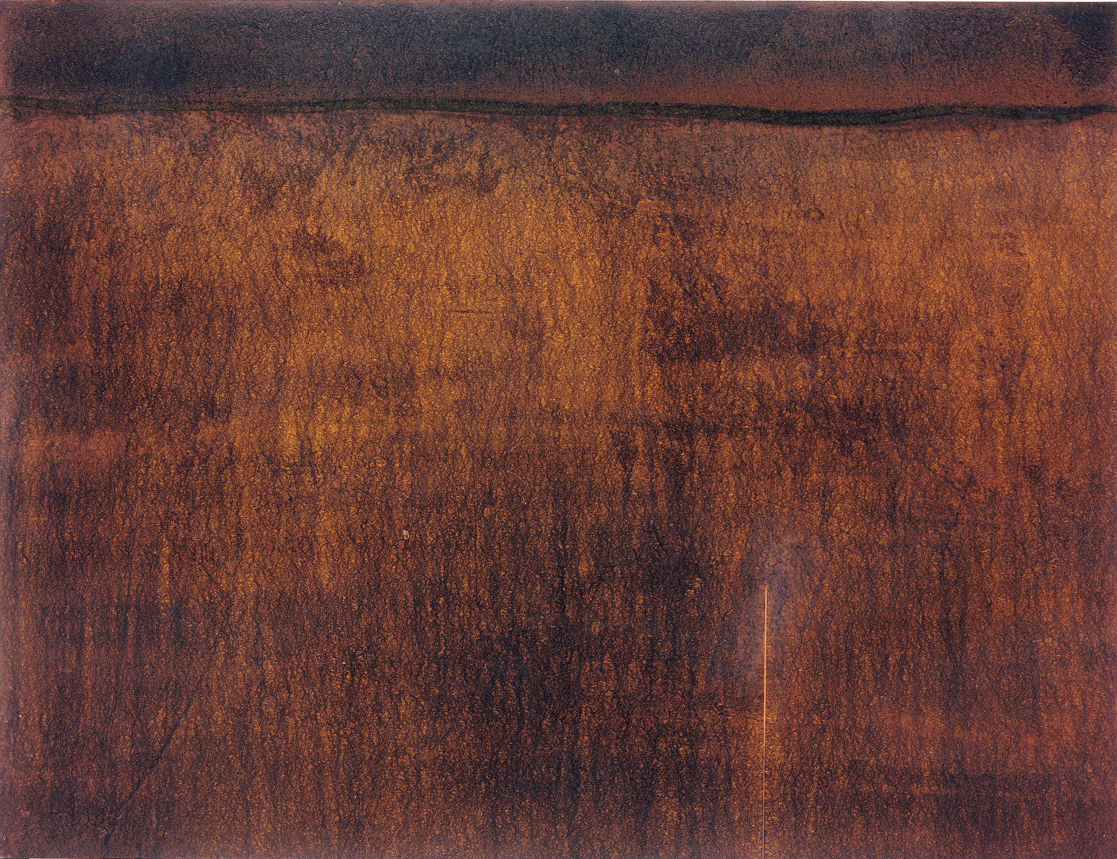 Sense títol,  pintura sobre tela, 90 x 114 centímetres 1993