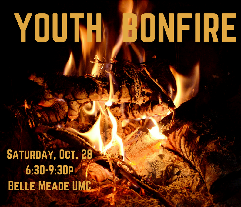 youth bonfire.png