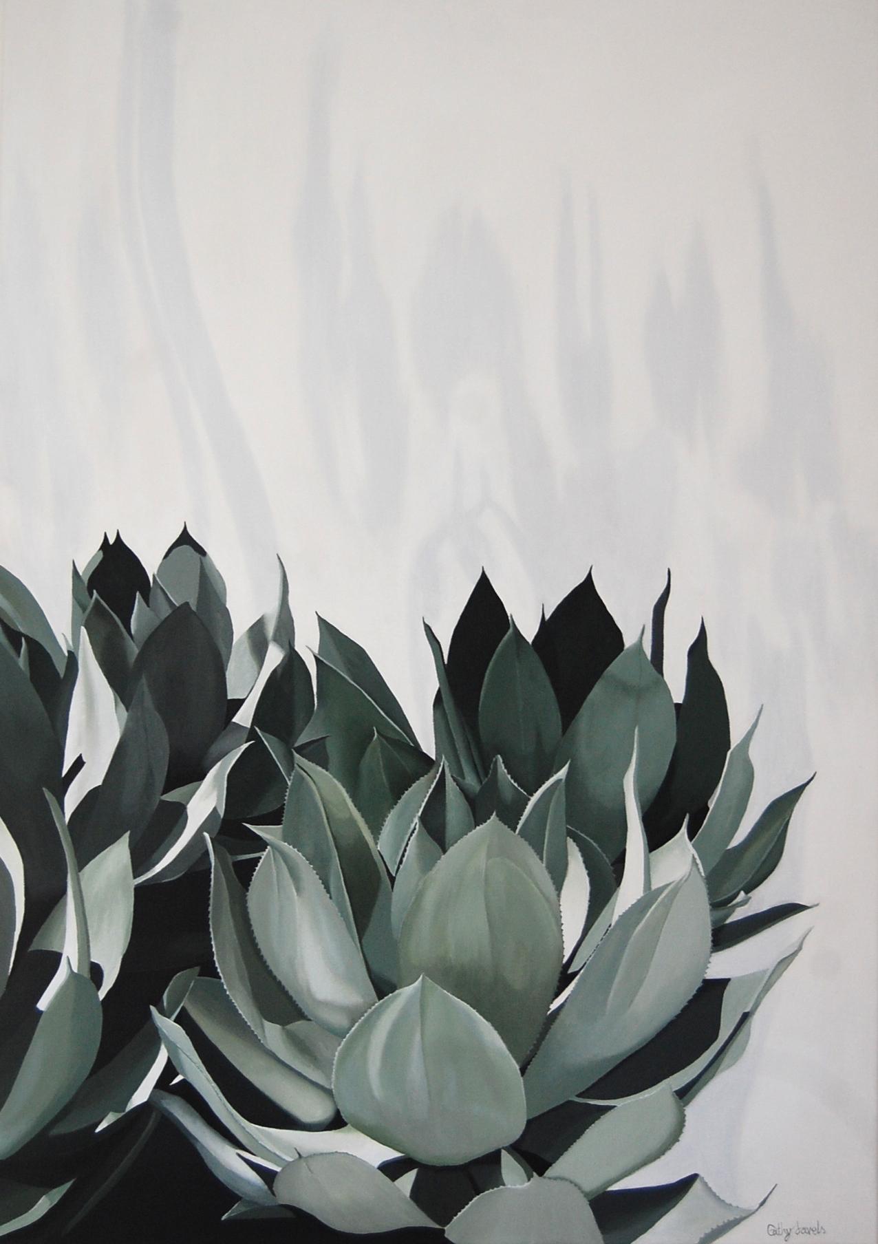 agave no wall.jpg