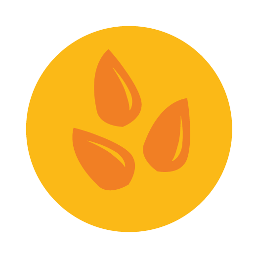 ucsd_iconography-16.png
