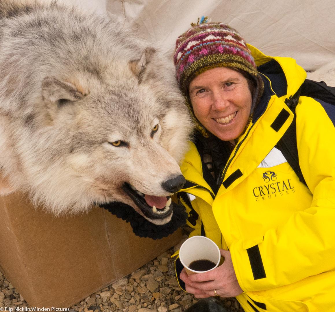 Linda having coffee with a wolf in Cambridge Bay last summer (credit: Flip Nicklin/)