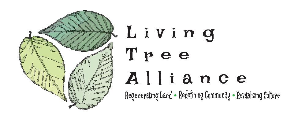 Living Tree Logos_06.jpg