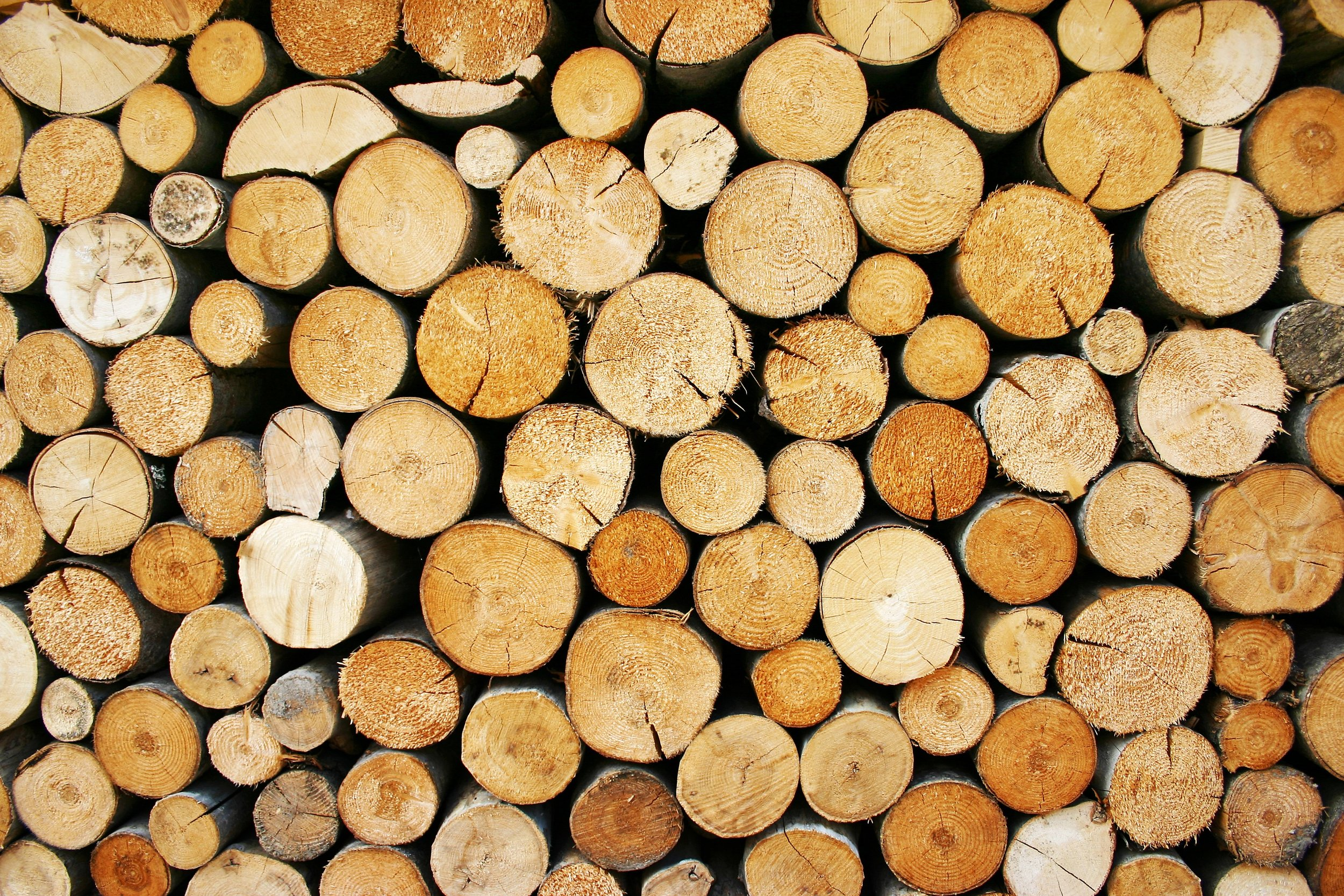 wood-1613942.jpg