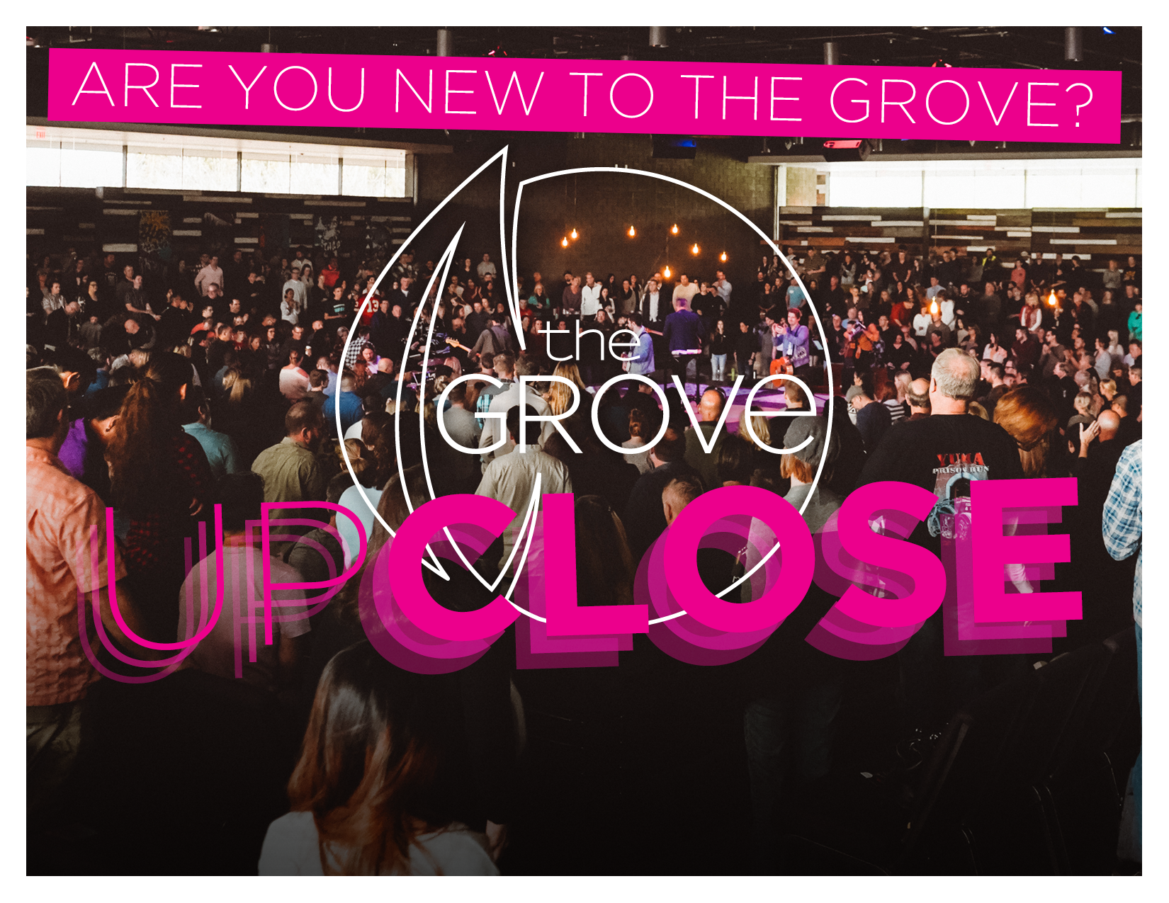Grove Up Close-for-web-page.png