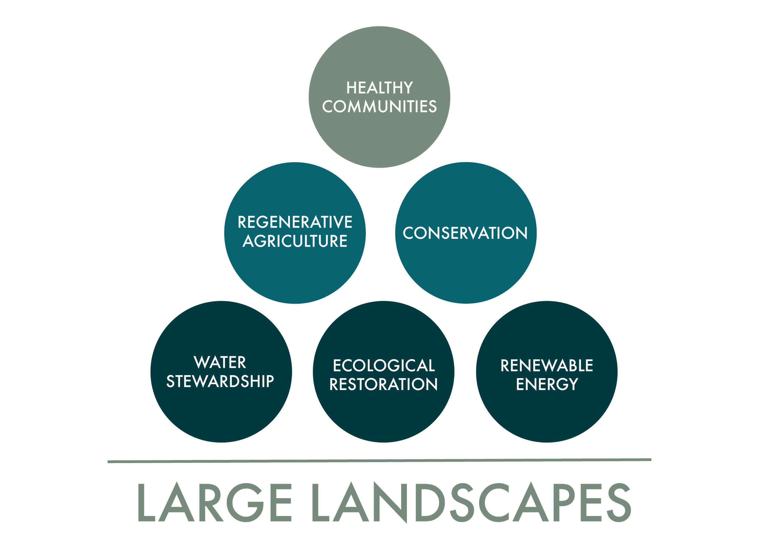 In developing and conserving large landscapes, we use ecological restoration, regenerative agriculture, water stewardship, and additional land-use strategies as building blocks to create healthy communities.