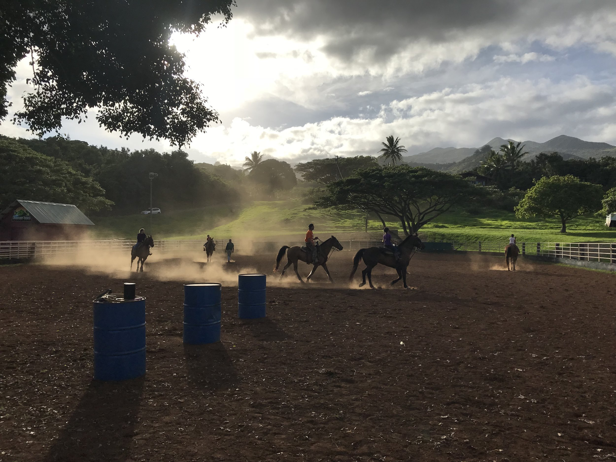 Future generations of cowboys practicing roping at Hana Ranch.
