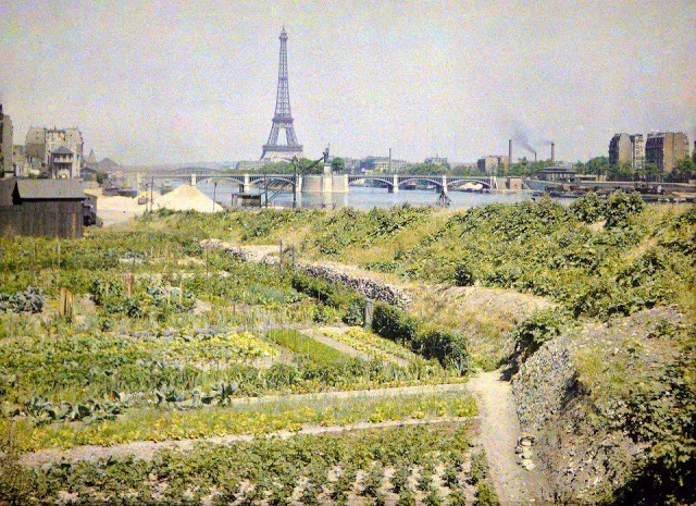Urban farming in Paris at the beginning of the 20th century | Photo credit: Albert Kahn Museum
