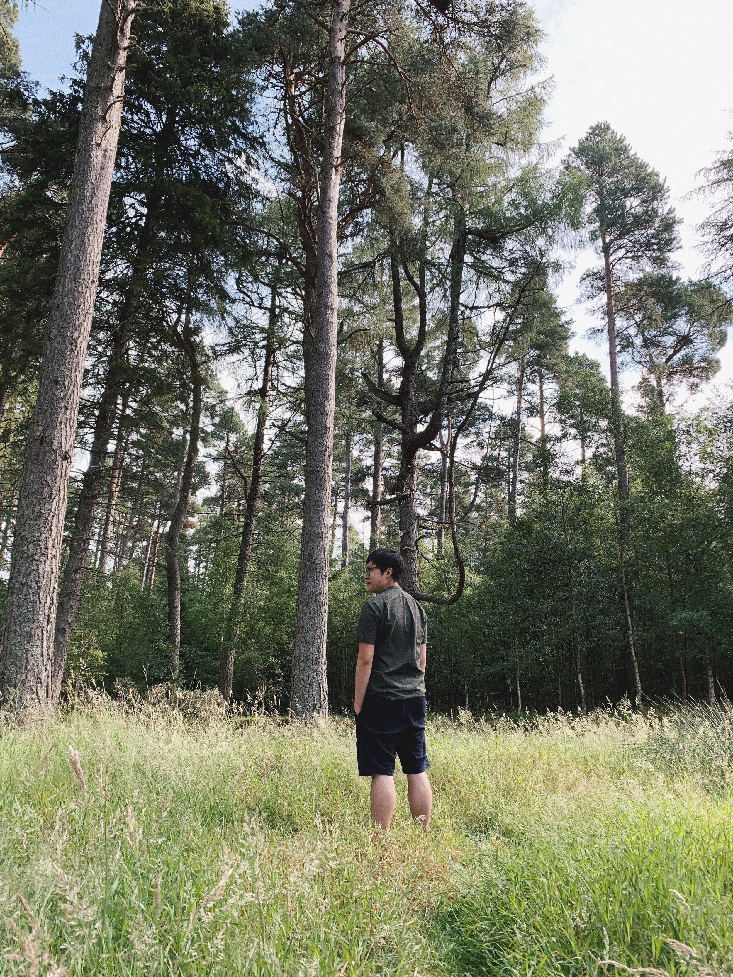 Cairngorms 3) walk 6.JPG