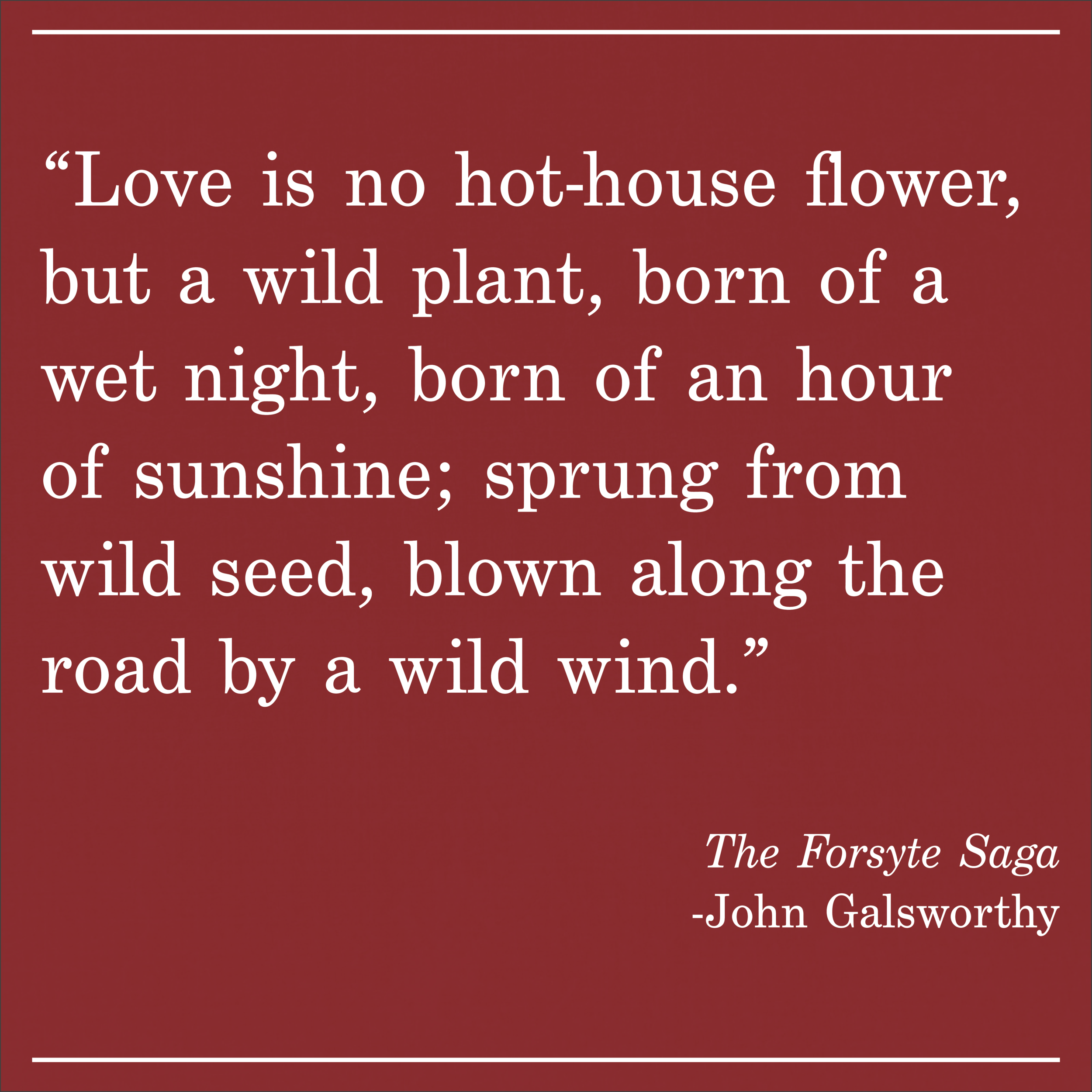 Daily Quote The Forsyte Saga by John Galsworthy