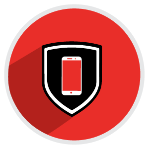 emm-security-icon.png