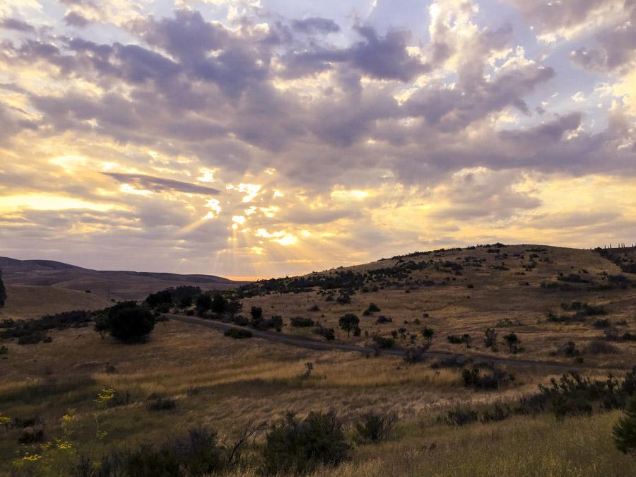 landscapes-60.jpg