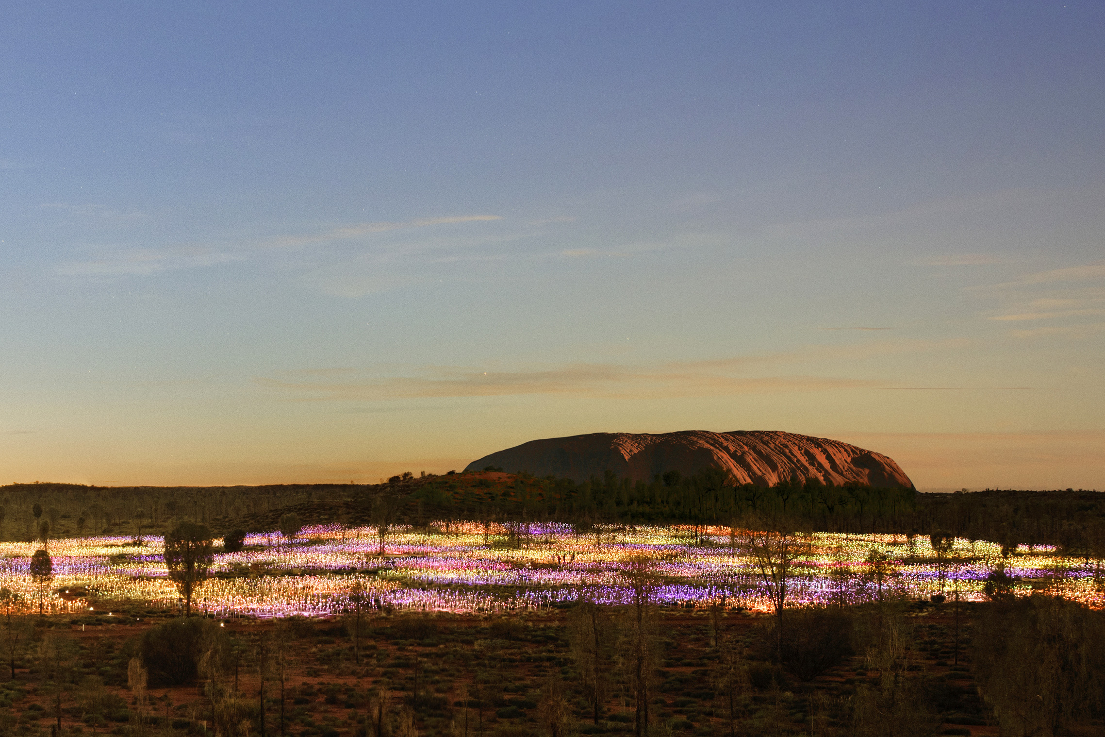 field-of-light-uluru-australia.jpg