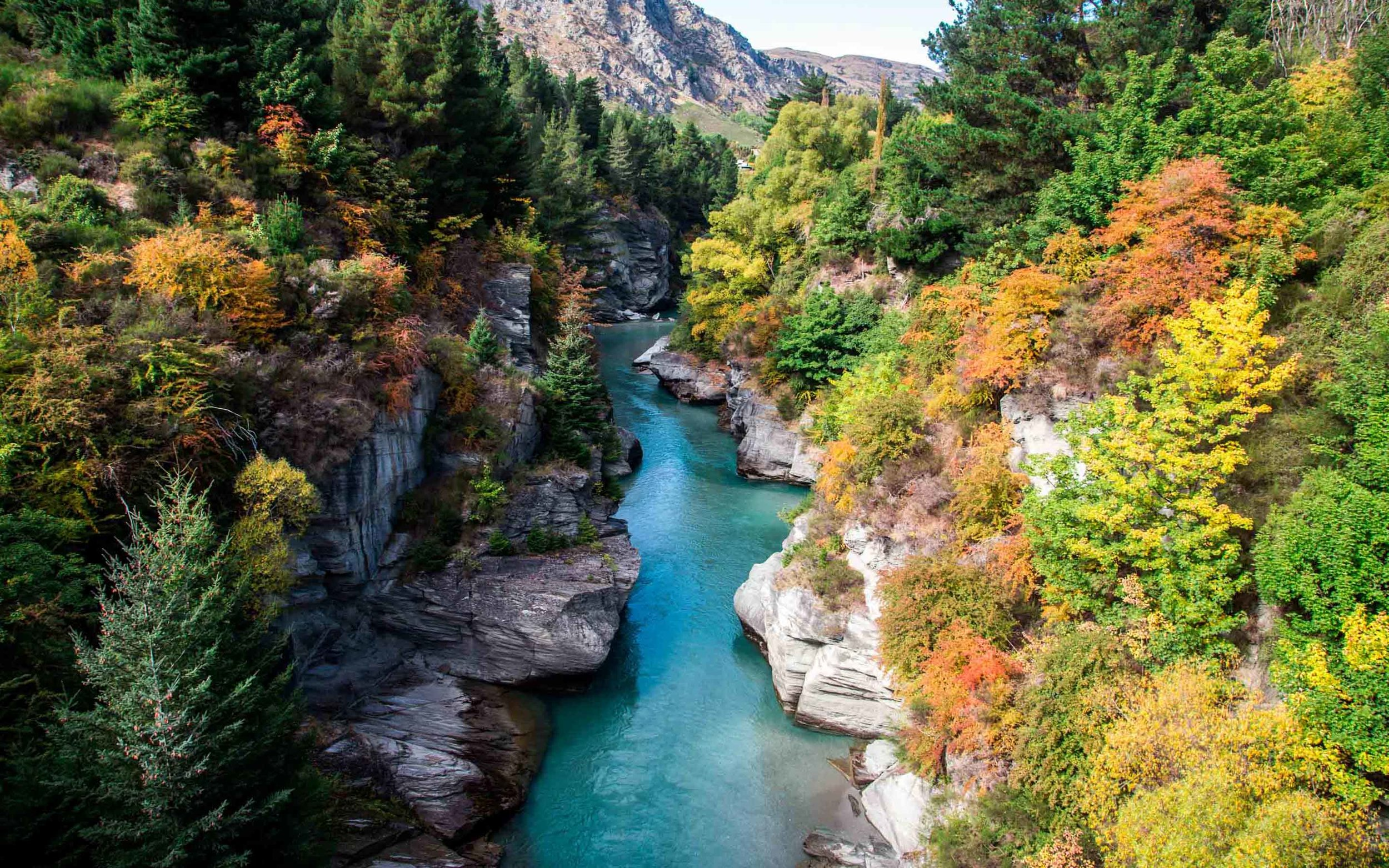 Shotover River in Autumn