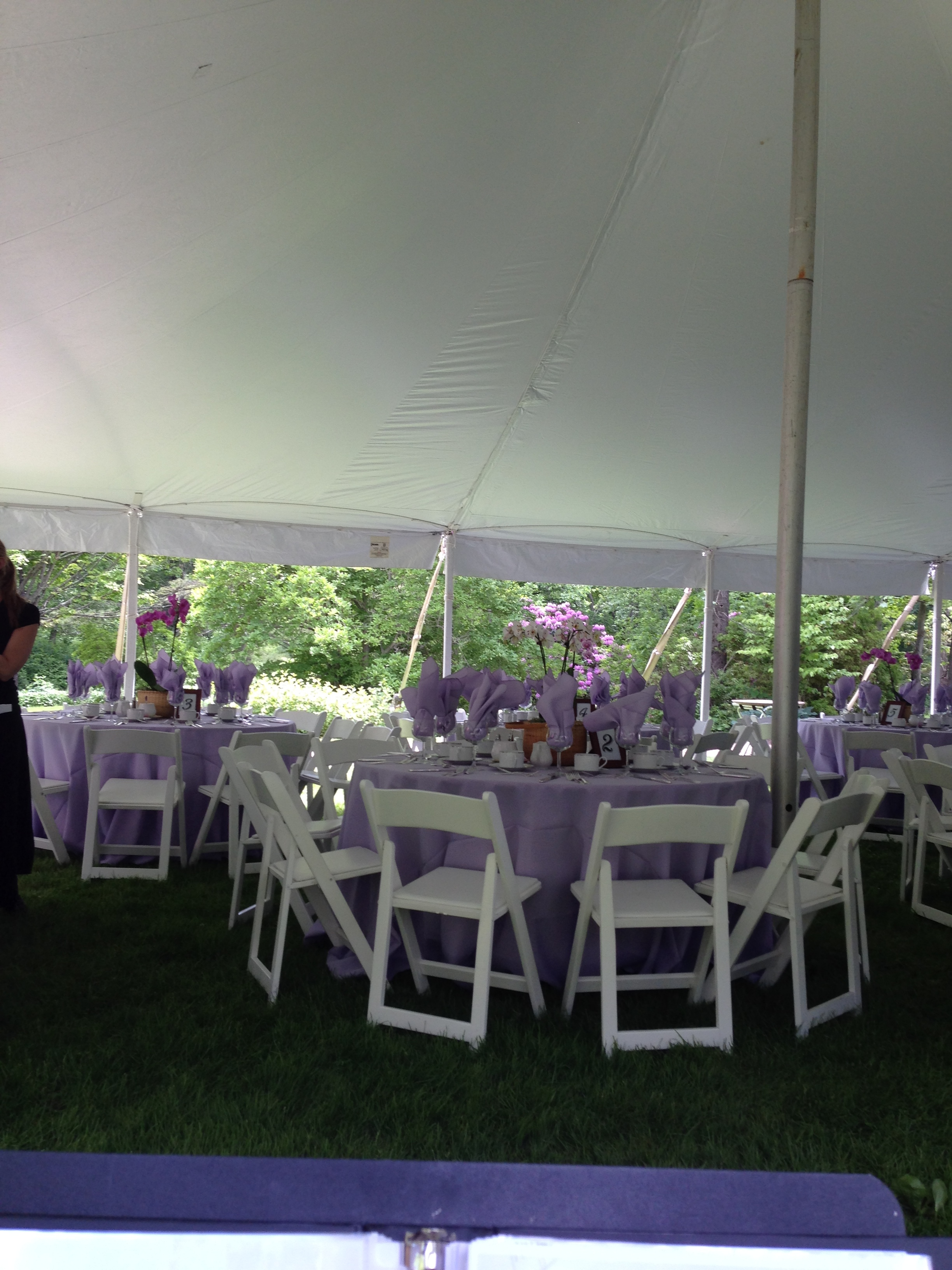 Outdoor Tent Luncheon with Solo Cello