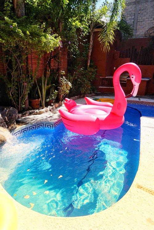 Casa Coati Pool.jpg