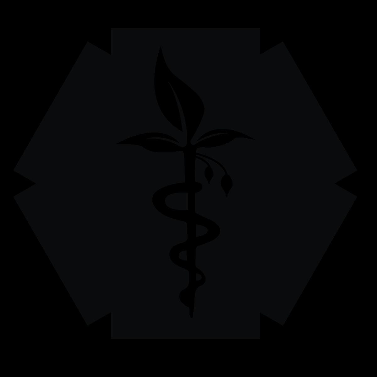 iboga-safe-logo.png
