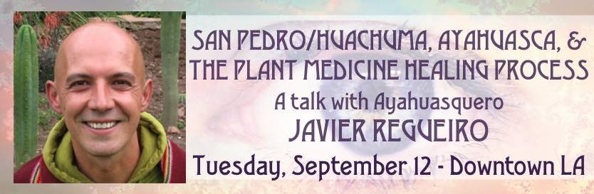 Javier Regueiro San pedro huachuma ayahuasca plant medicine aware project salon psychdelics