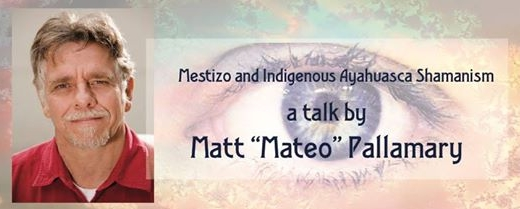 mateo pallamary Mestizo and Indigenous Ayahuasca Shamanism