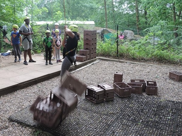 15 falling off crates.jpg