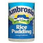 rice pud.jpeg
