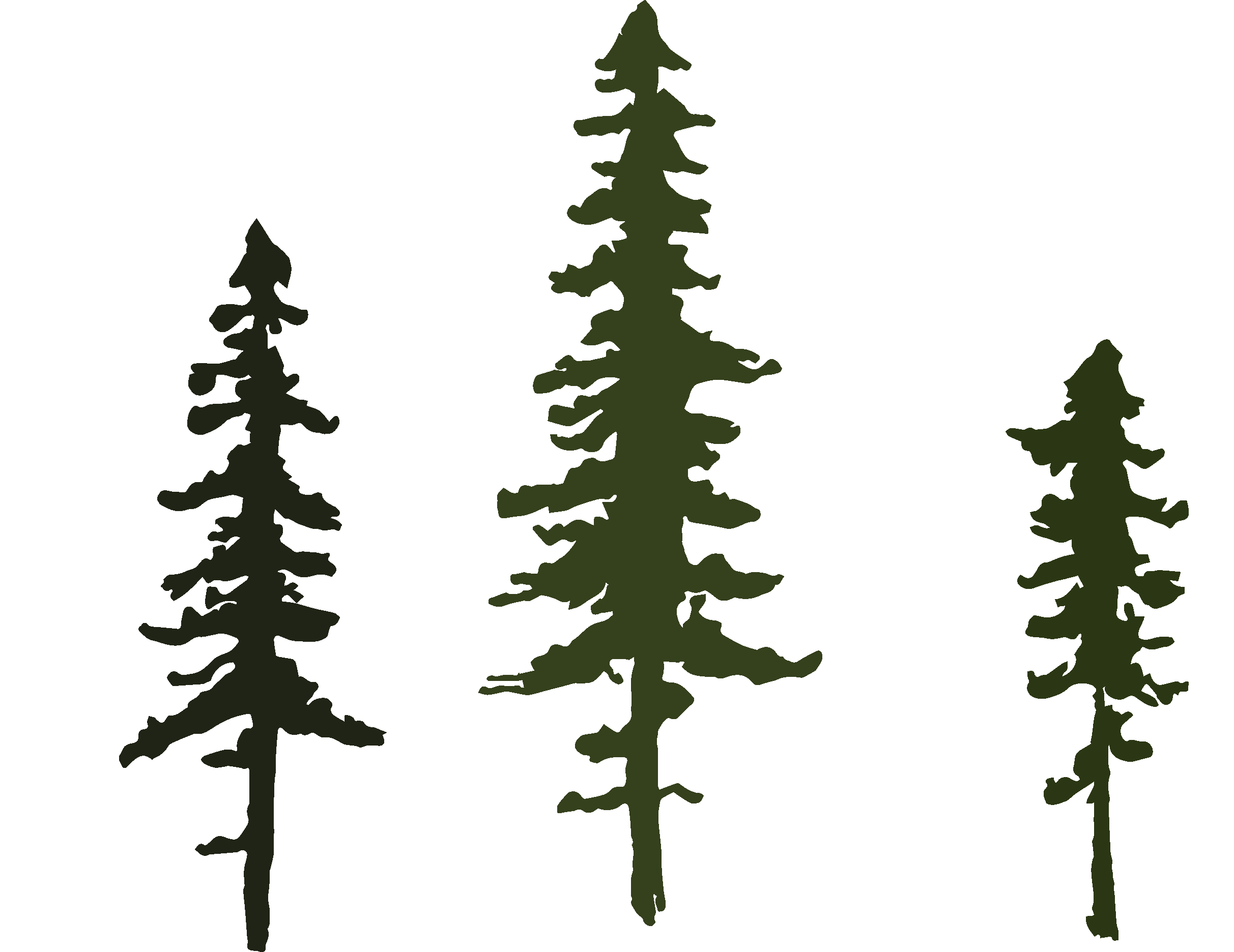 logo_eli_stromy copy.png