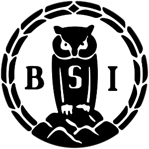 bsi_small.png