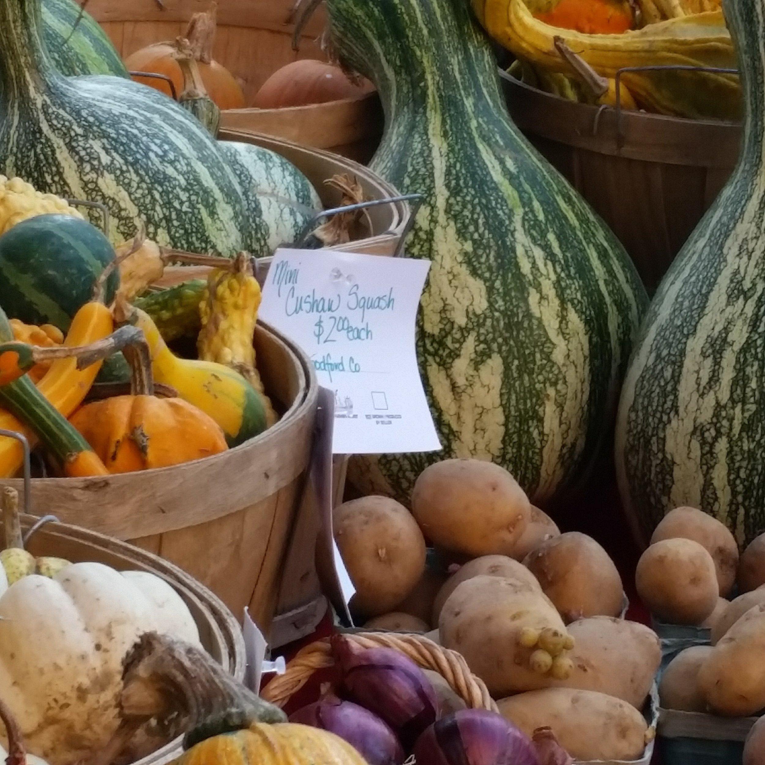 fall market squash.jpg
