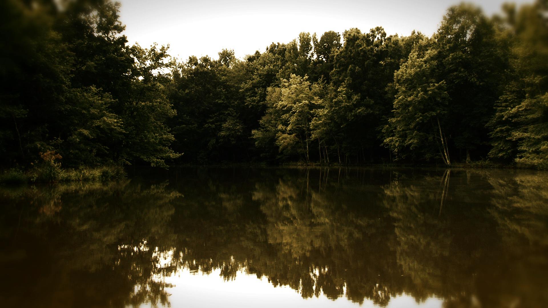 The Diver-Pond landscape Day TIF.jpg