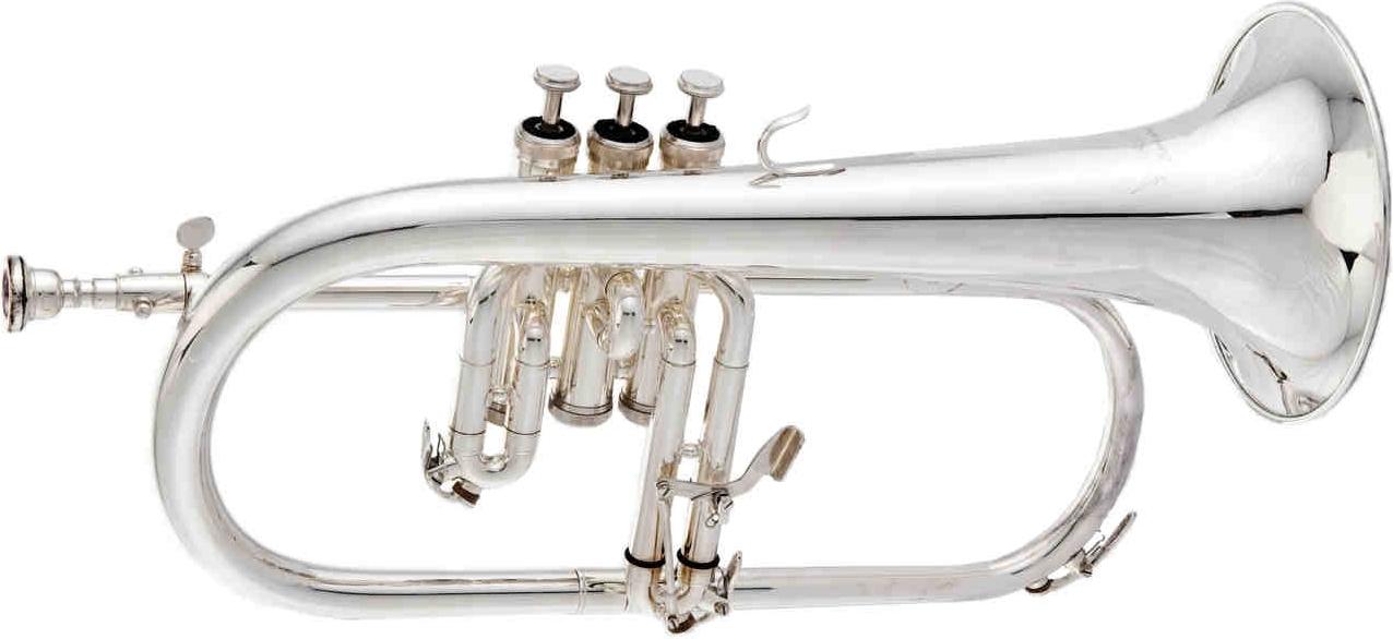 TrumpetTP608.JPG