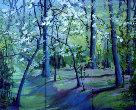 dogwoods of allegan  13 x 15