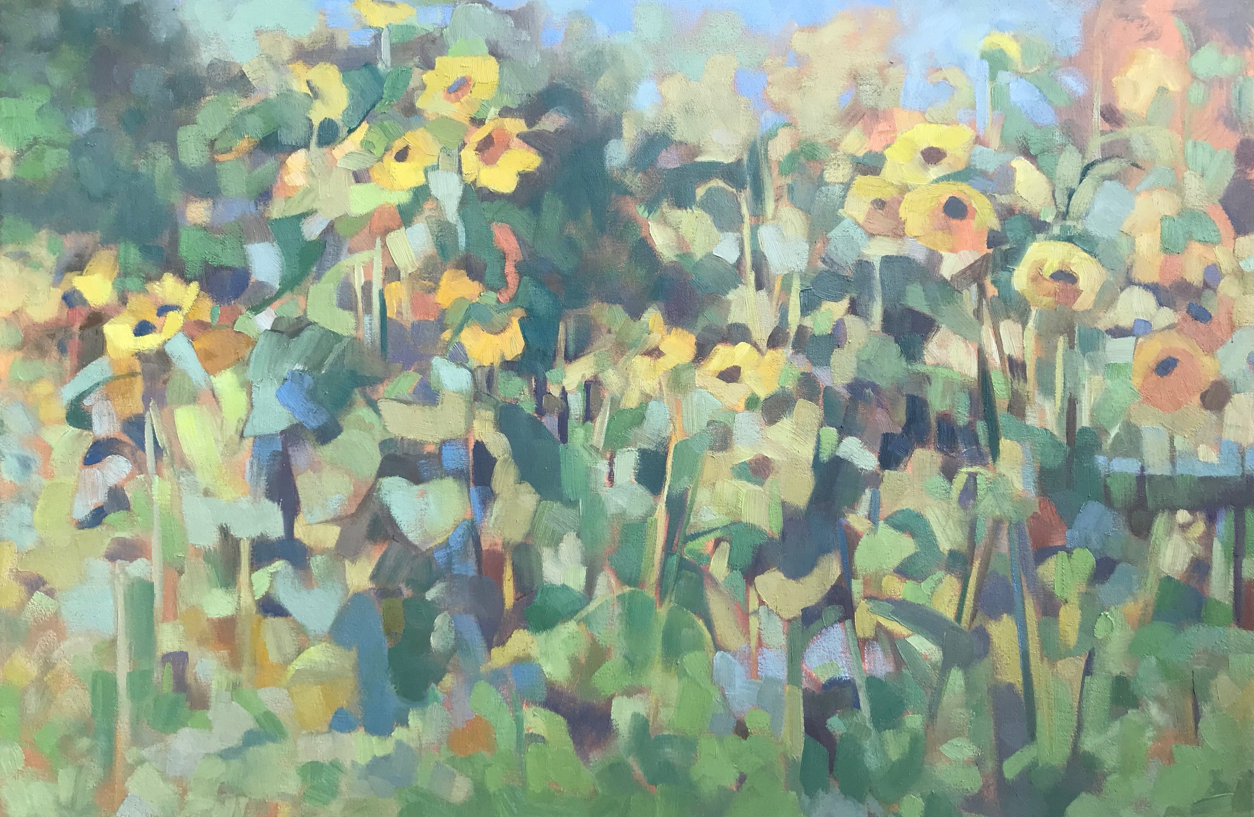 "Sunflowers from Pleasant Hill, oil on canvas, 24""x 36"""