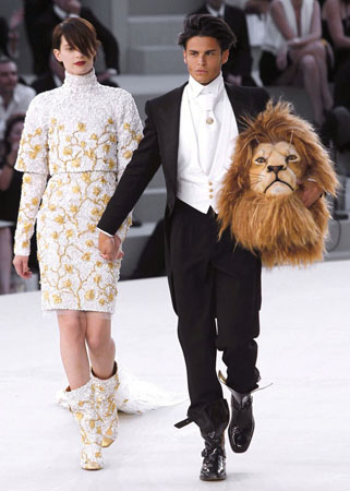 lion02.jpeg