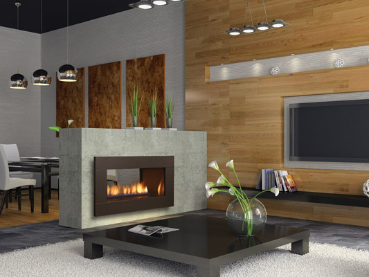 Regency Horizon See Through    View Full Specs   One of the most popular uses for the Regency Horizon See Through is to create two amazing fire views from separate rooms using one fireplace. It is a cost effective way to divide a larger space while maintaining an open feel.
