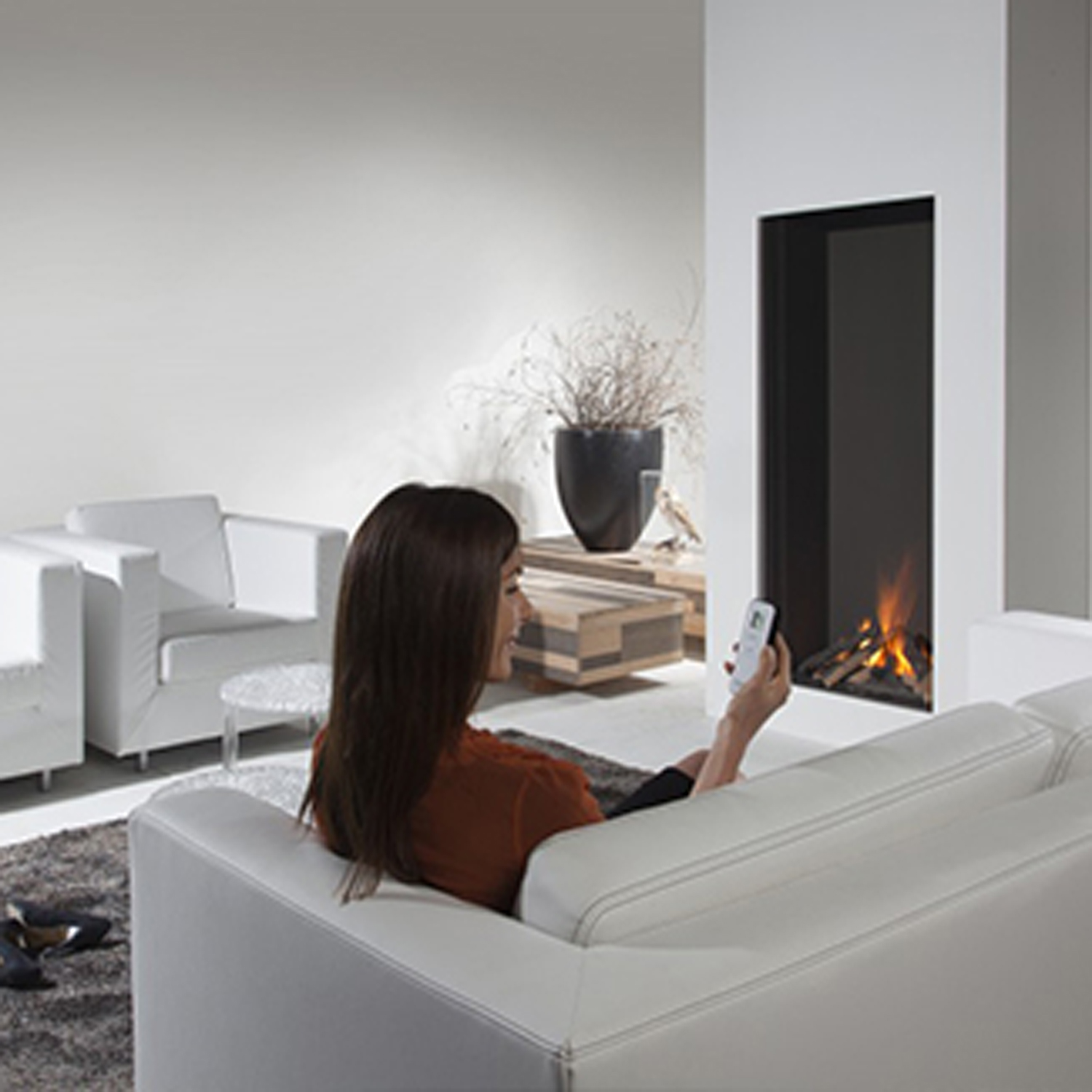 European Home Sky    View Full Specs   Whether you're looking for sleek materials, such as brushed stainless, or a unique multi-sided unit for that special room, European Home offers a complete line of direct vent and vent-free indoor and outdoor gas fireplaces.