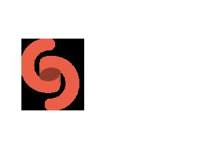remiisrael-design-Sig-logo.png