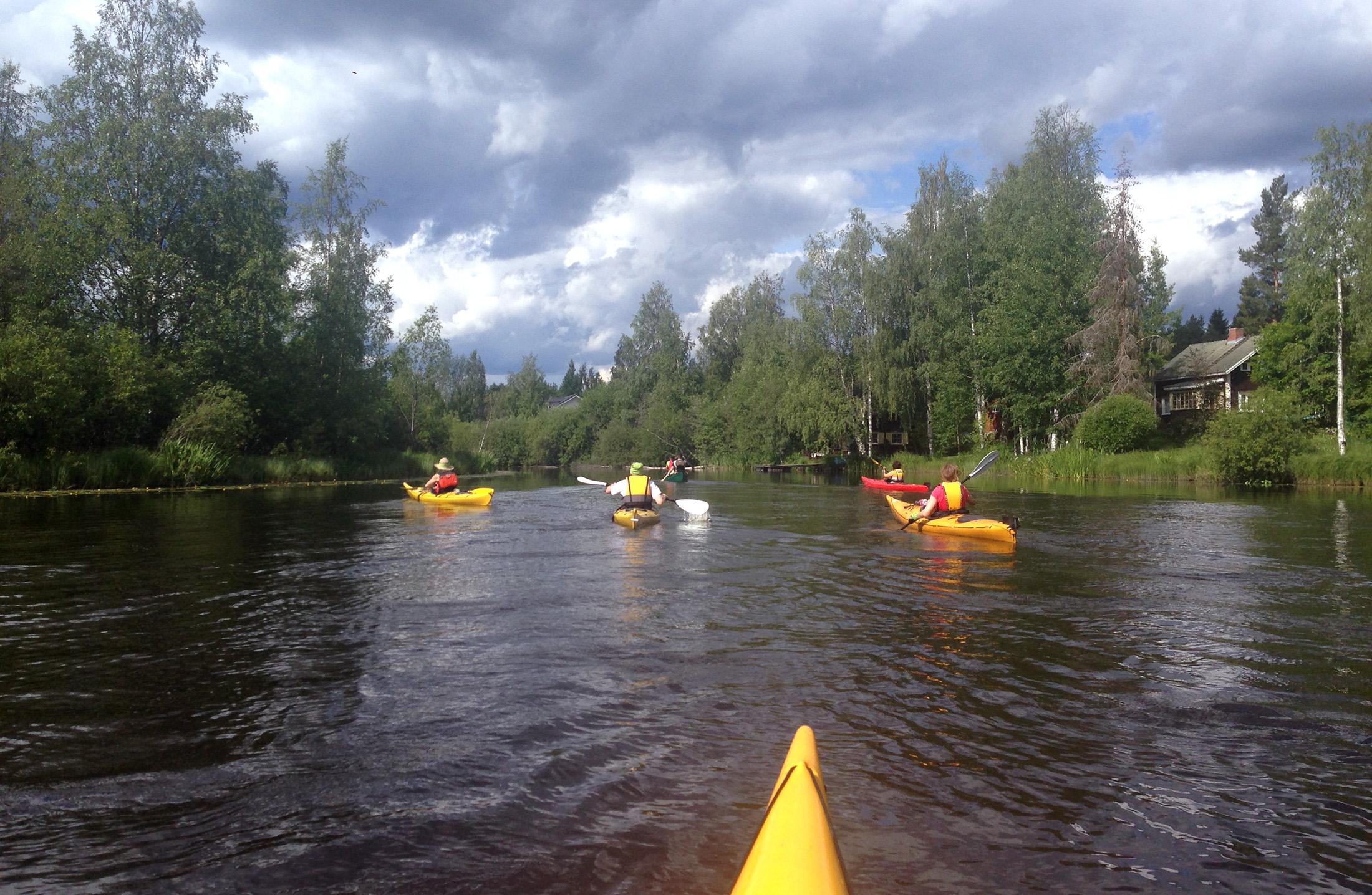 Tervareitin kartoitusta Alajärven Kurejoella 29.6.2014